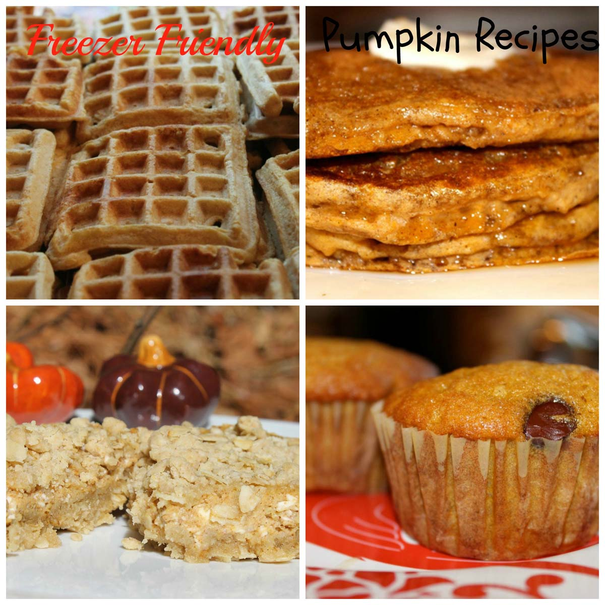 pumpkin recipes (1)